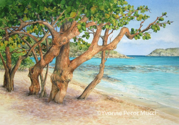 View of Sapphire Bay, 18 x 24 Framed, Watercolor by Yvonne Pecor Mucci