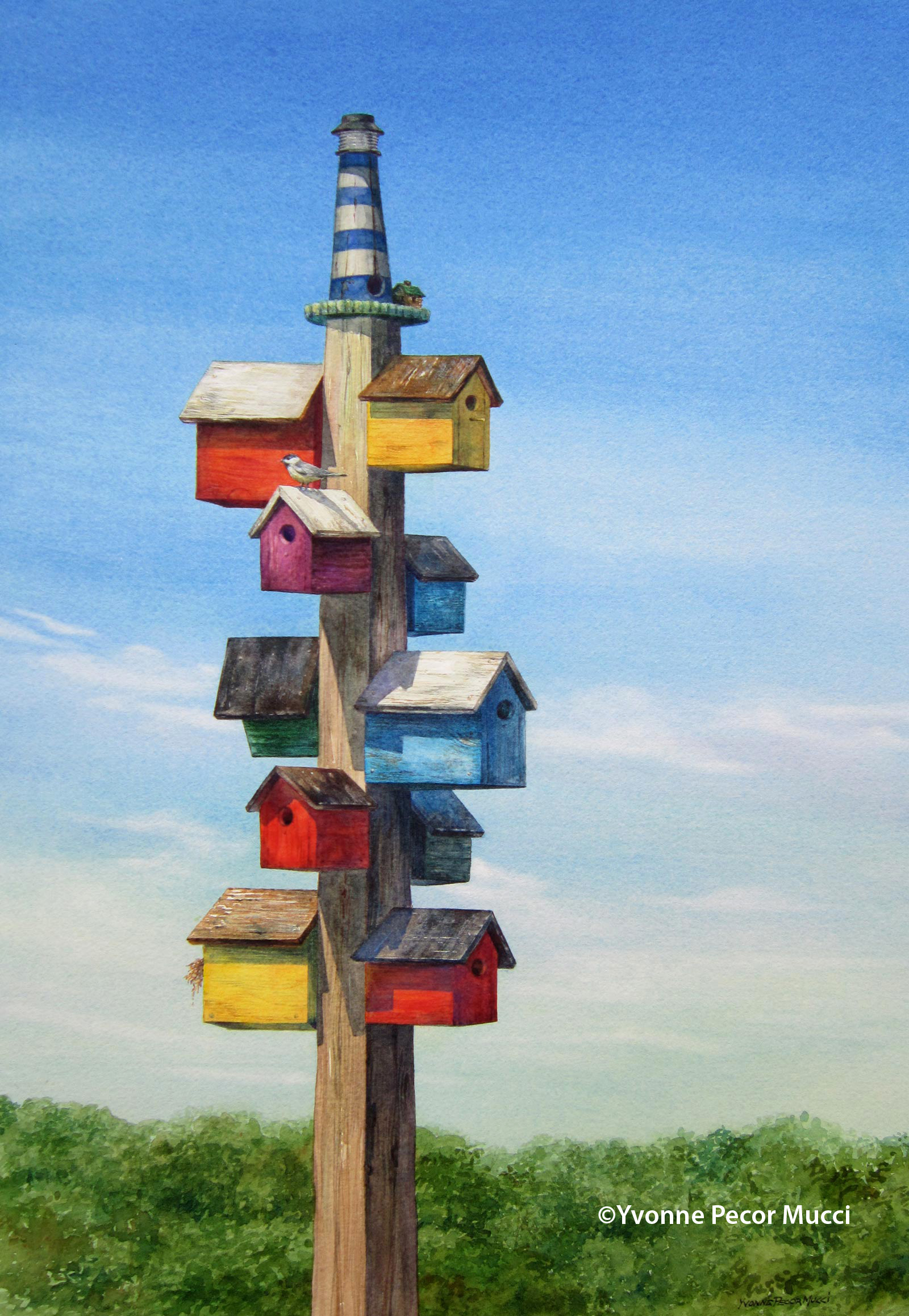 birdhouse plans edmonton