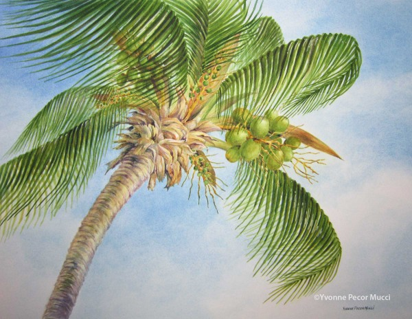 Palm Tree Watercolor (Framed 20 x 24) By Yvonne Pecor Mucci