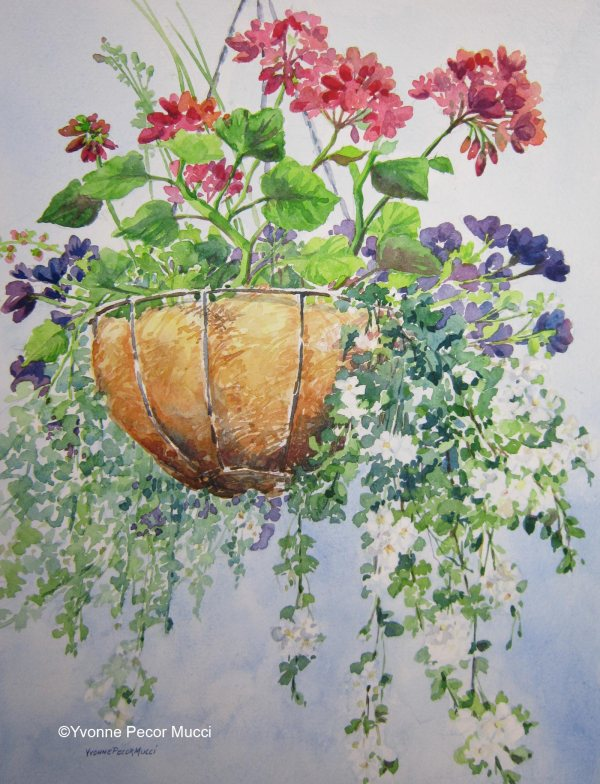 Hanging Basket Watercolor 14w x 18d
