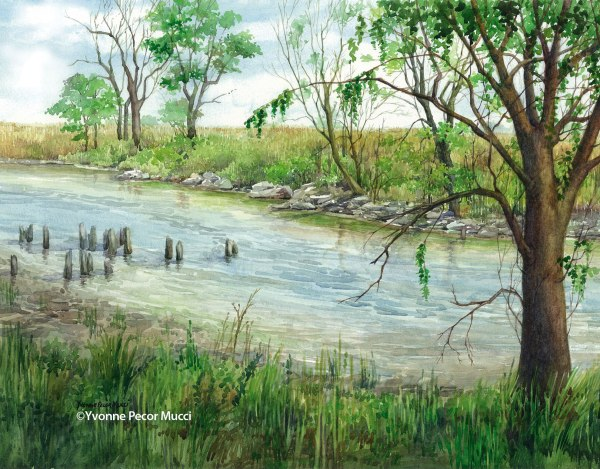 Fenwick Creek Watercolor by Yvonne Pecor Mucci
