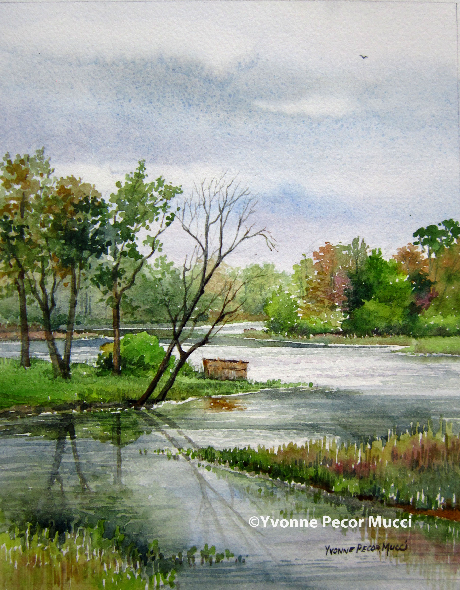 """Creekside"" watercolor by Yvonne Pecor Mucci (Framed 11 x 14, available)"